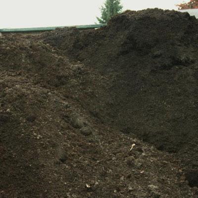Current specials for Mushroom soil